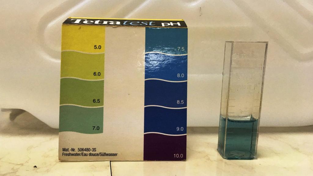 アロワナ水槽の水質チェック